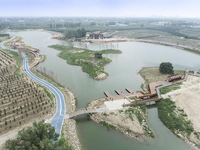 """补水38万平方米 雄安""""千年秀林""""项目水位达到设计常水位线"""